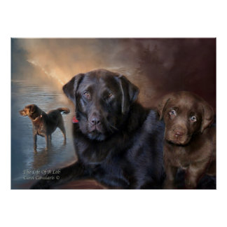 The Life Of A Lab Art Poster Print