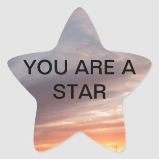 THE LIGHT IN ME RECOGNIZES THE LIGHT IN YOU STAR STICKER