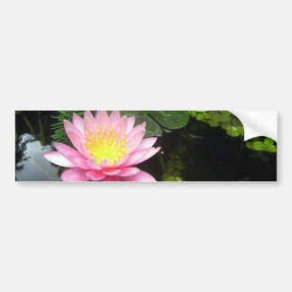 The Lily and The Goldfish Bumper Sticker