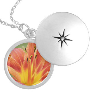 The Lily Locket