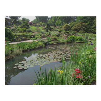 The Lily Pond at RHS Wisley Poster
