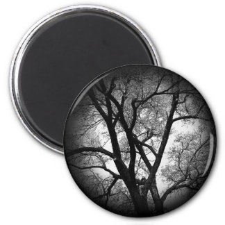 The Limbs of Nature 2 Inch Round Magnet