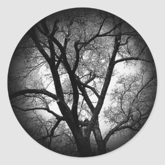 The Limbs of Nature Classic Round Sticker