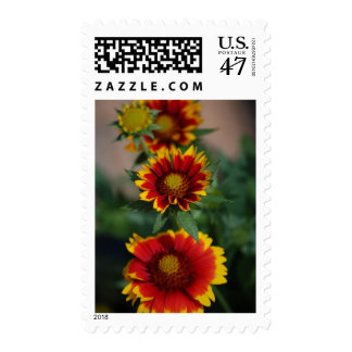The Line Up - Flower Postage