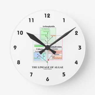 The Lineage Of Algae Evolutionary Biology Round Clock