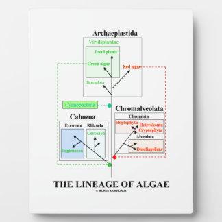 The Lineage Of Algae Evolutionary Biology Plaque