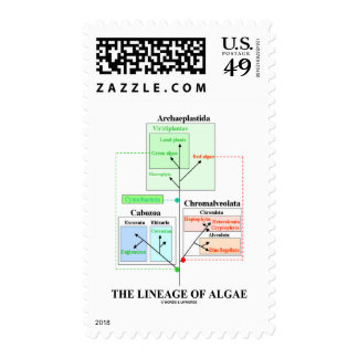 The Lineage Of Algae Stamps
