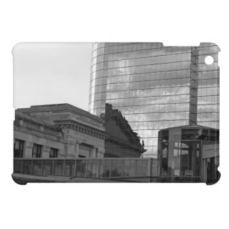The Link in Kansas City iPad Mini Case