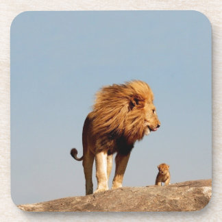 The Lion King ( Adult Lion and Cub) Coaster