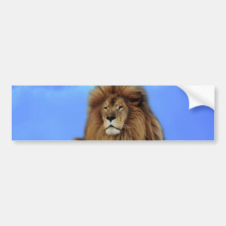 The lion king bumper sticker