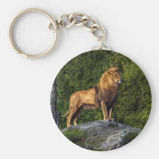 The lion king key chains