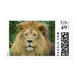 The Lion Postage Stamp
