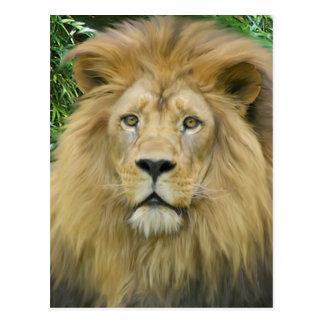 The Lion Postcard
