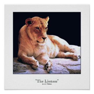 """""""The Lioness"""" Print"""