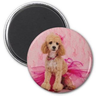 The little Ballerina Magnet