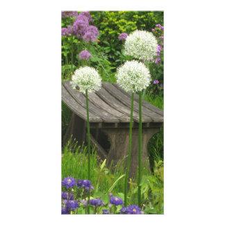 The Little Bench - Gloss Finish Photocard Card