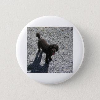 The Little Black Poodle Pinback Button
