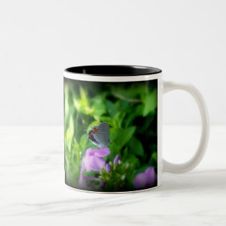 The Little Gray Butterfly Two-Tone Coffee Mug