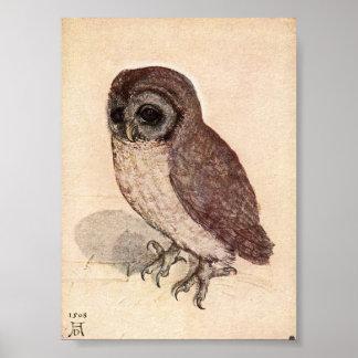 The Little Owl by Albrecht Durer Poster