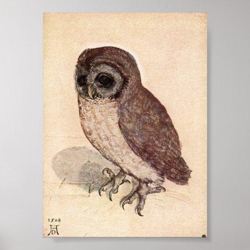 The Little Owl by Albrecht Durer Print