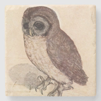 The Little Owl by Albrecht Dürer Square Stone Coaster