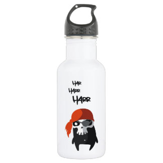 The little pirate stainless steel water bottle