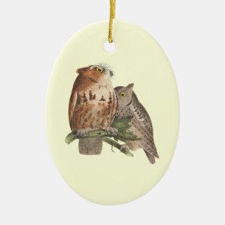 The Little Screech Owl(Bubo asio) Ceramic Ornament