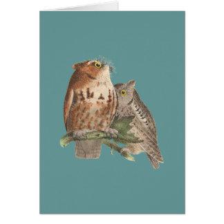 The Little Screech Owl(Bubo asio) Greeting Card