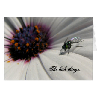 The little things... card