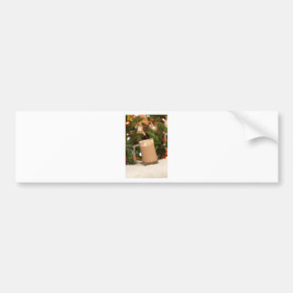 the little things.jpg bumper sticker