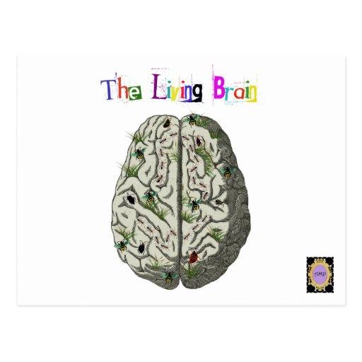 The Living Brain Postcard