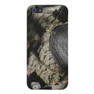 The Log Pile iPhone 5 Case