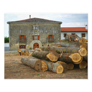 The Logs and the House Photo