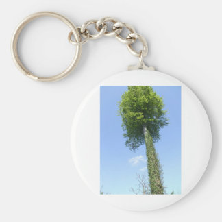 The Lollipop Tree Keychain