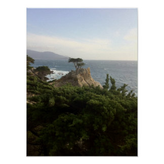 The Lone Cypress of Monterey Print