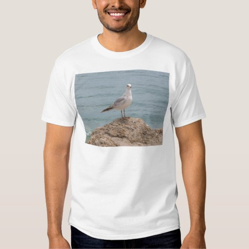 The Lone Seagull (2134) T-shirt