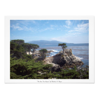 """""""The Lone Tree Lingers"""" Monterey County Photo Print"""