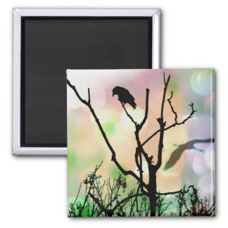 The Lonely Crow Magnet