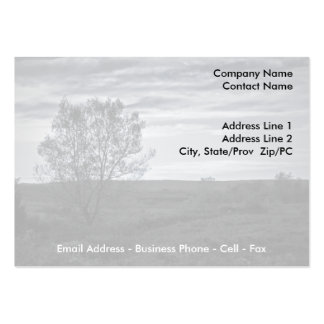 The Lonely One business card