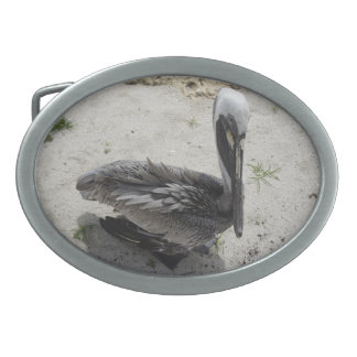 The Lonely Pelican Oval Belt Buckle