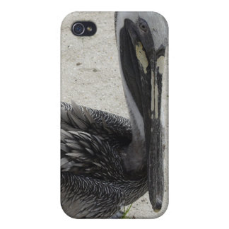 The Lonely Pelican iPhone 4/4S Case