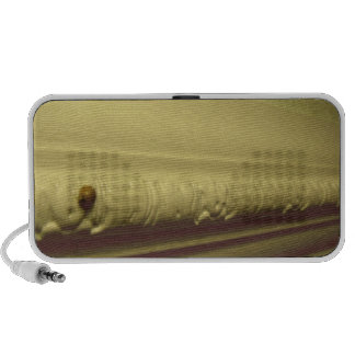 The long way home travel speaker