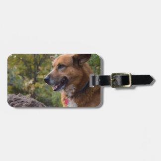 The Look of Loyalty Bag Tag