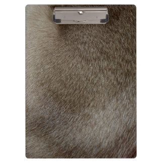 The look of Luxurious Seal Point Siamese Cat Fur Clipboard