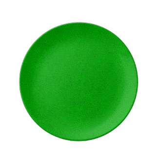 The look of Snuggly Bright Neon Green Suede Dinner Plate
