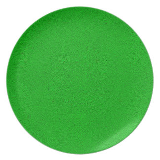 The look of Snuggly Bright Neon Green Suede Melamine Plate