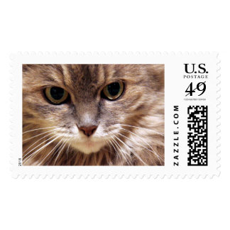 The Look Postage Stamp