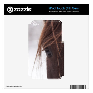 The look iPod touch 4G decals