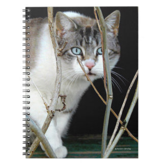 """""""The Lookout"""" Notebook"""
