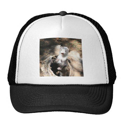 The Lookout Trucker Hat